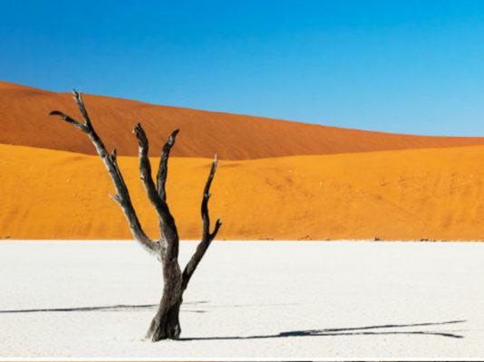 Photo de SOSSUSVLEI - Désrt de Namibie
