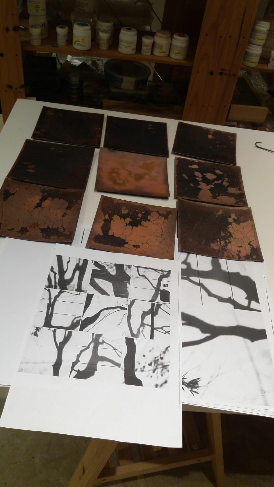 prépartaion des plaques d ecuivre pour les photos des 9 ombres d'arbres