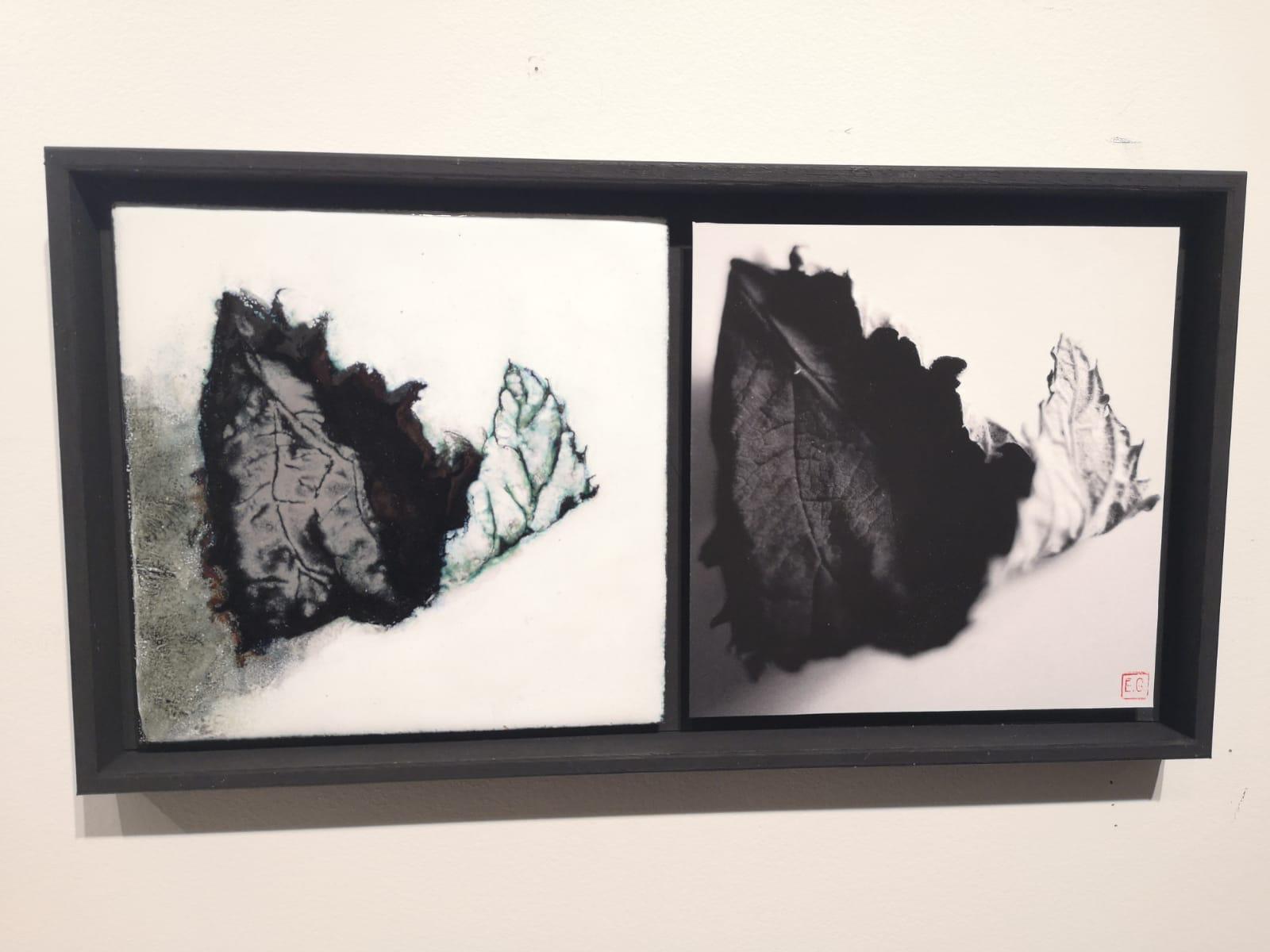 dialogue d'une feuille d'arbre posée en noir et blanc- version émaillée juxtaposée à côté de la photo dans un même cadre
