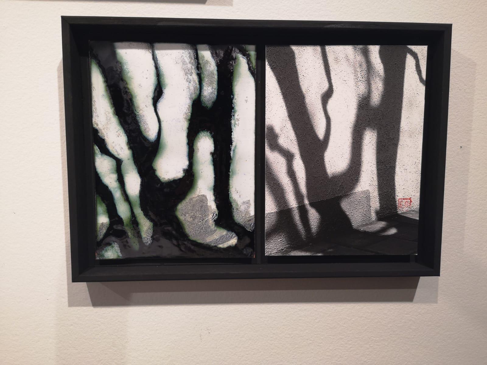 tableau en noir et blanc représentant une ombre d'arbre sur un mur - à gauche la partie émaillée et à droite la photo