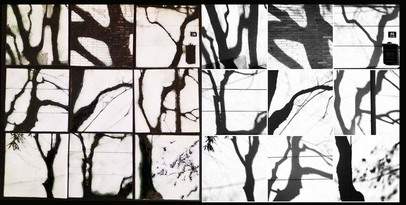Composition des 9 ombres d'arbre - à gauche la partie émaillée et à droite la photo